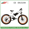 Easy rider 48v 500w electric bike manufacturer in india