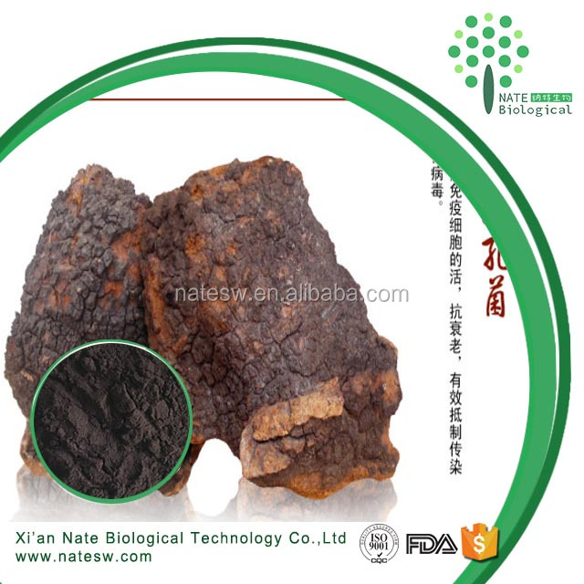 Supply Free Sample Anticancer Chaga powder extract Polysaccharides 50% Beta glucan 20% triterpenoid 2%