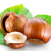 the king of nuts 100% pure and natural Corylus Avellana Seed filbert hazel hazelnut oil
