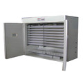 FRD 3168 capacity solar incubator for hatching eggs