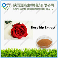 Factory supply high quality Rose Hip Extract in good price