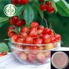 Natural Vitamin C High Standard Acerola Cherry Powder