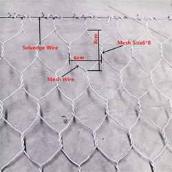 chicken wire mesh lowes/animal fence/hexagonal gabion mesh for sale