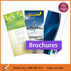 Full Color Folded Brochure Printing