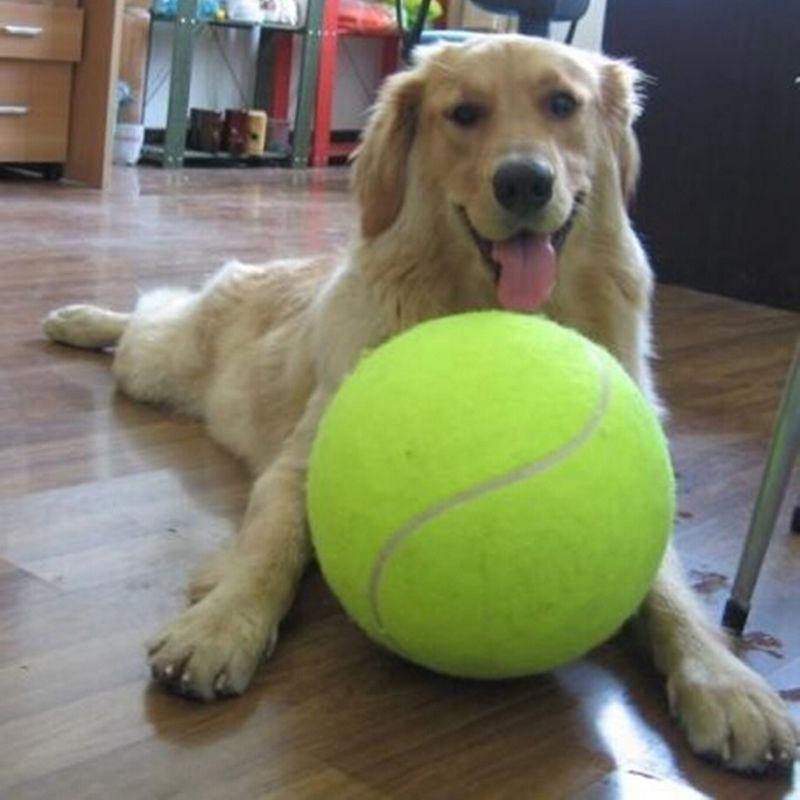 24cm Large Dog Ball for Pet Chew Toy Pet Dog Puppy Tennis Ball Thrower Chucker Ball Launcher Play Toy