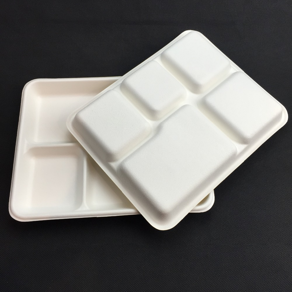 Disposable Biodegradable Bagasse 5 Compartments Lunch Tray