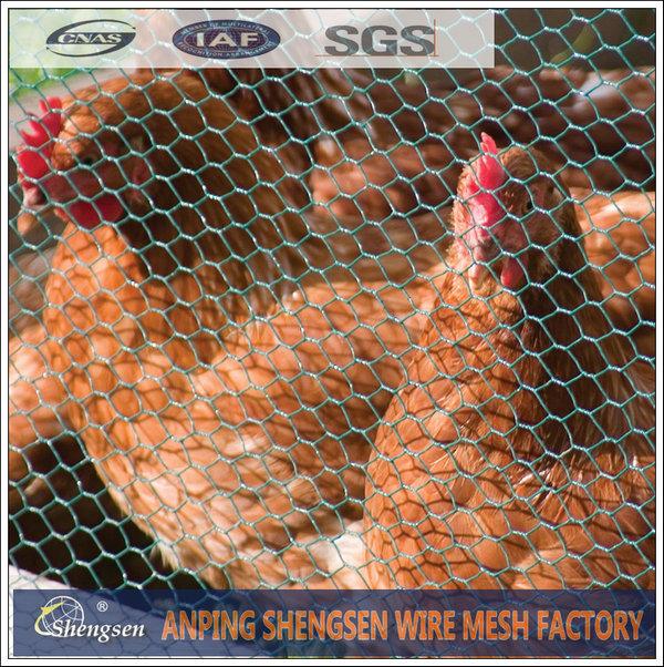 hexagonal chicken wire mesh for sale