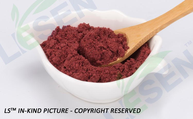 100% Natural Haccp EP Standard Cranberry Freeze dried Fruit Extract Powder