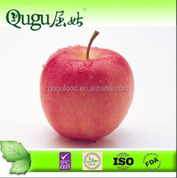Sweet and Healthy Huaniu Apple from Gansu, China
