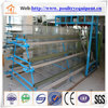 automatic poultry equipment professional egg chicken