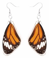 hot sale Unique and beautiful REAL butterfly wings earring