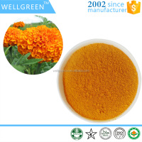 manufacture supply marigold flower extract lutein