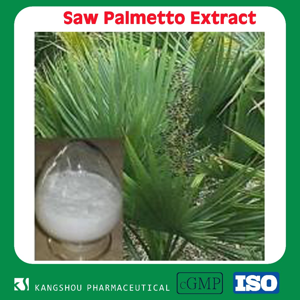Hot sell bulk herb saw palmetto plant extract Powder with Fatty acid
