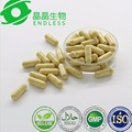 tongkat ali seeds Root Extract Powder Capsules for hot sales