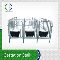 Competitive Price Pig Gestation Stall