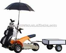 CE Fashion Cheap 1000w Electric Power Single Seat Golf Buggy With Trailer For Sale SX-E0906