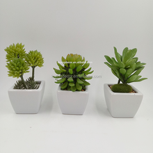 A Set Artificial Succulent Fake Potted Plants