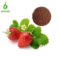 high germination hybrid fruit seeds Bonsai sweet red Strawberry Seeds for sale