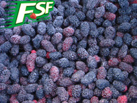 IQF/Frozen black mulberry ,fresh mulberry 2017 new crop