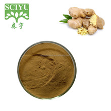 100% natural instant ginger powder , ginger extract powder water soluble