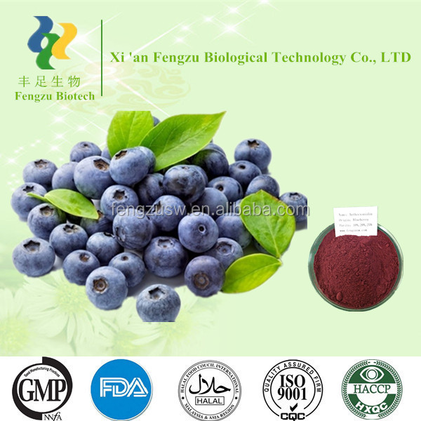 Best quality purity fresh bilberry extract 5% 10%