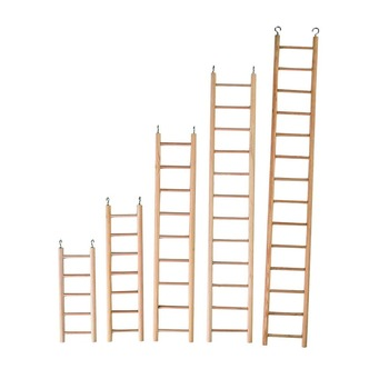 Plain Wooden Ladder