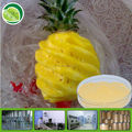 Watre soluble pineapple juice powder