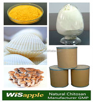 High quality Sea/Mushroom source Food grade Chitosan Powder