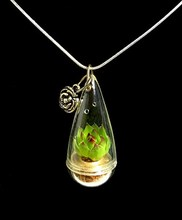 Live Lotus Succulent Plant Necklace Wearable Miniature Succulent Necklace Live Terrarium Necklace