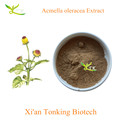 Tonking Supply Acmella oleracea Extract