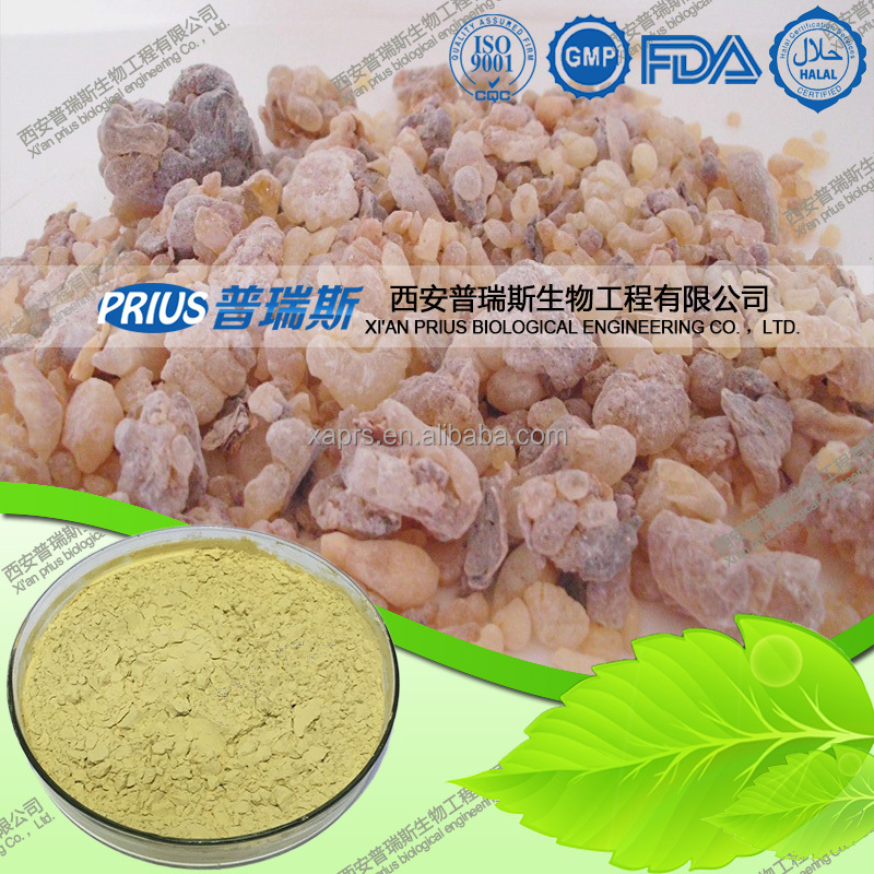 Boswellic acid 65% 90% High quality pure Boswellin extract Olibanum extract