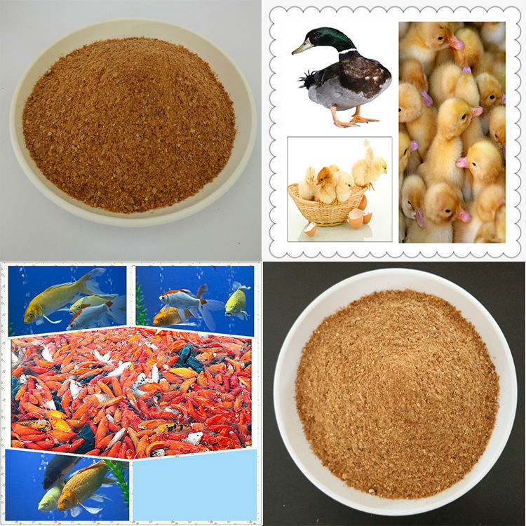 Chinese products wholesale poultry feed rice gluten meal