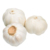 Wholesale Price China Fresh Pure White Garlic