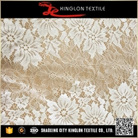 China Professional Manufacture Expensive Lace Fabric