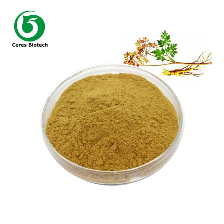 Sales! Natural Plant Extract Angelica