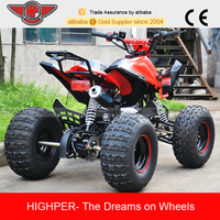 110CC Mini Quad (ATV004)