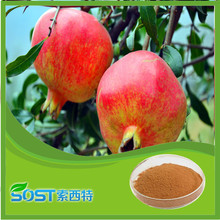 factory supply wholesale pomegranate extract Punicalagin 25%