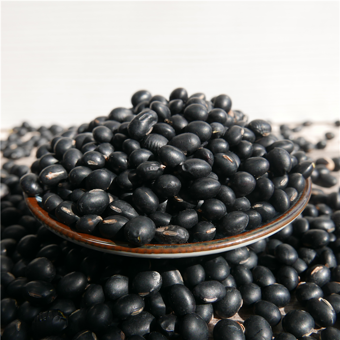 Chinese organic black soy bean soybean hot sale