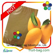 wax lined paper bags for fruit protection bag