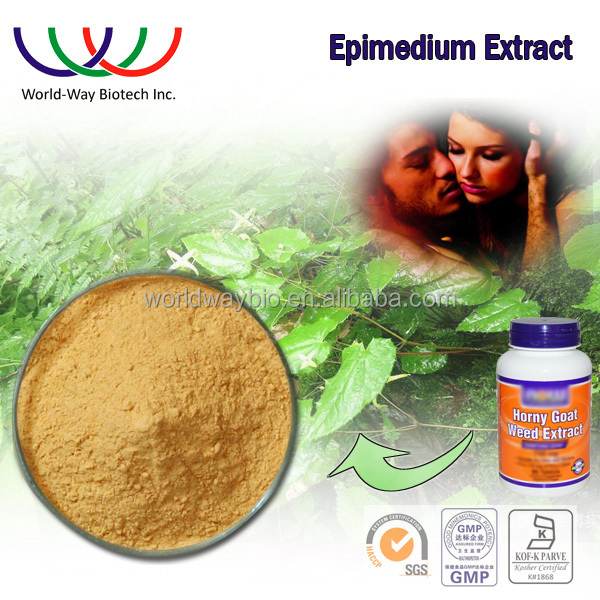 Epimedium extract Icariin powder free sample HACCP Kosher FDA horny goat weed powder icariin 20% 40% 60% 80% 98%
