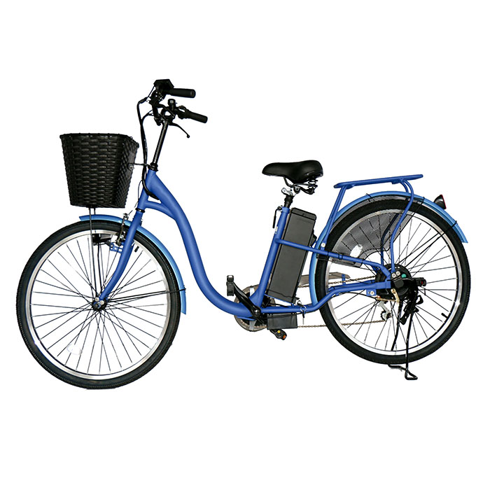 48V Cheap New Model Electric Bicycle