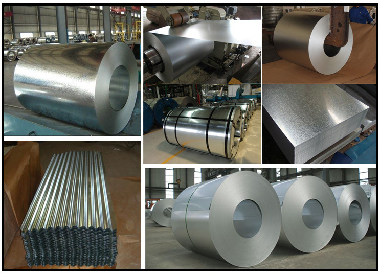 New products on china market galvanized sheet metal roll