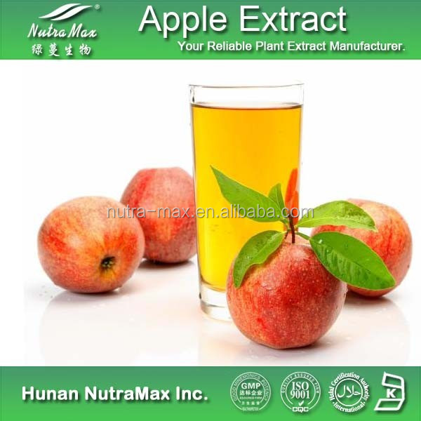 100% Natural Apple Extract Apple Pectin