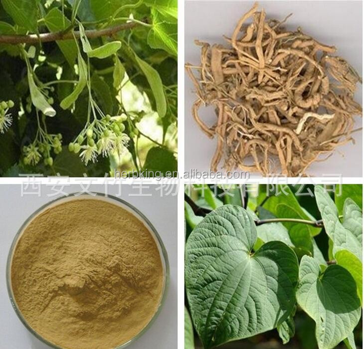 Instant 10:1 Wild kava root powder best selling