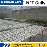 PVC cheap hydroponic nutrients nft pipes