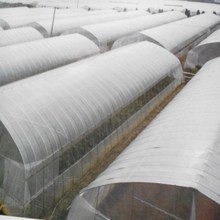 Commercial Poly Film Greenhouses Poly Film Greenhouse Tunnel Film Greenhouses