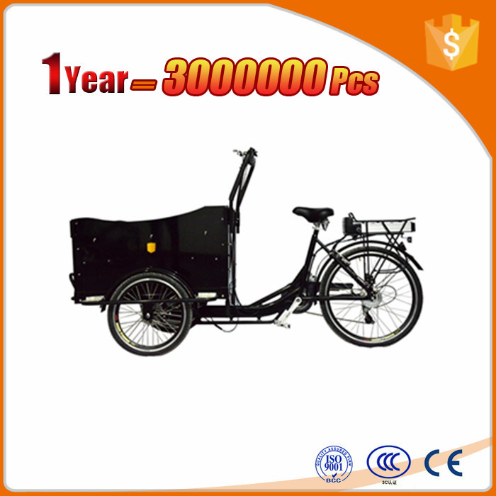 lithium battery three wheel electric family cargo bike trike Jiangsu Factory