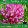 Red Clover Extract Biochanin A, Red Clover Extract Biochanin A 98%, Red Clover Extract Powder Biochanin A