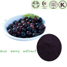 Herbal Extract Anthocyanidins 5% Acai Berry euterpe oleracea