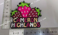 fruit fridge magnet,promotional 3d soft pvc fridge magnet